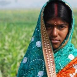 Read more at: Changing the face of Indian farming