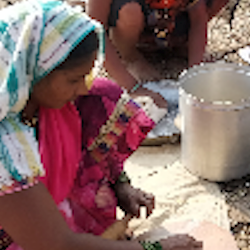 A snapshot of the staggering variety of food and cultural heritage on offer at tribal food festivals